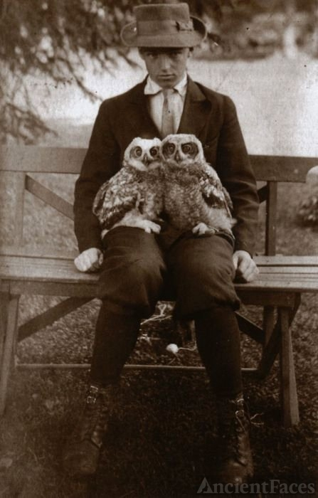 Boy with Pet Owls