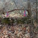 Confederate Soldiers Grave