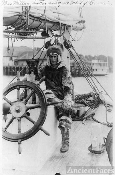 [Arctic explorer Donald MacMillan in fur suit at wheel of...