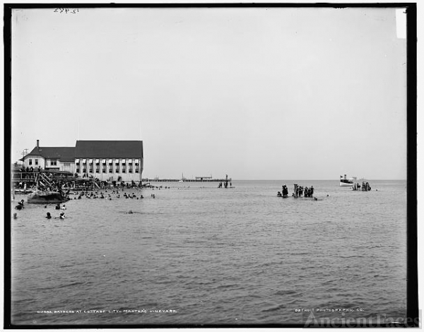 Bathers at Cottage City, Martha's Vineyard
