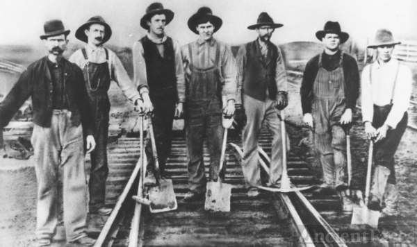 Native Lumber Co Railroad Pic