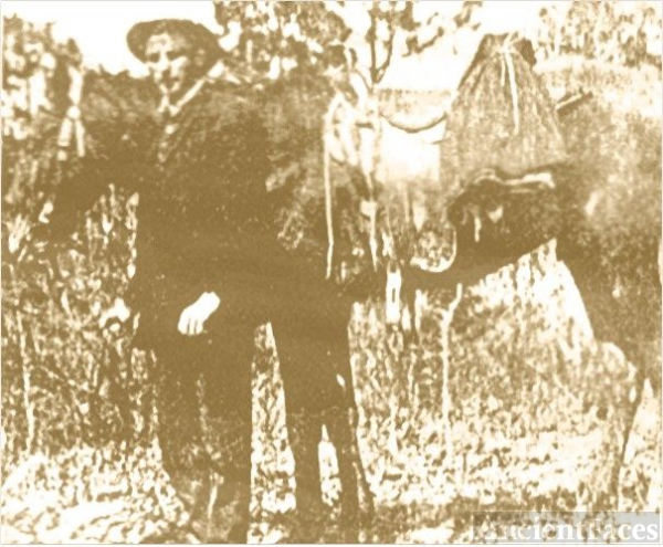 William V. King and his Civil War Horse