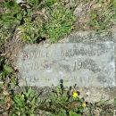 Lovicey Hatfield gravesite