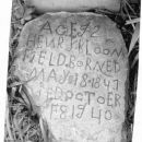 Henry Field Grave Stone Inscription