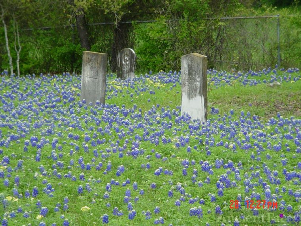 T.J.EuBanks headstone in the bluebonnets