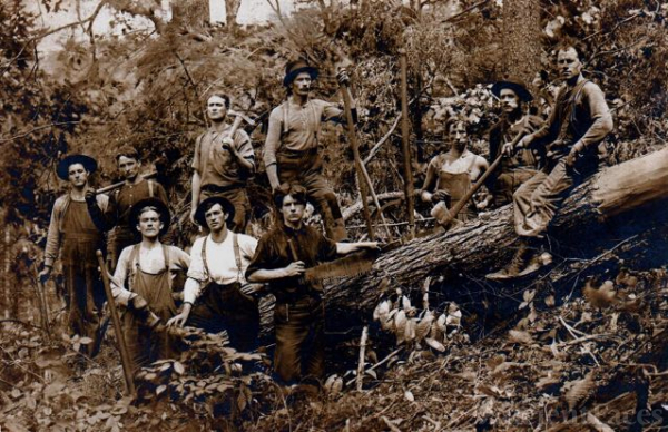 Blaine A ROSS and logging group in WV