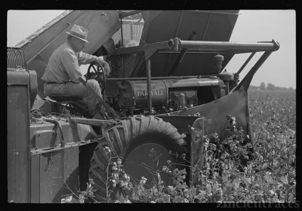 International cotton picker on Hopson Plantation,...