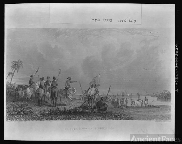 De Soto -- Tampa Bay, Florida--1539 / Drawn by Capt. S....