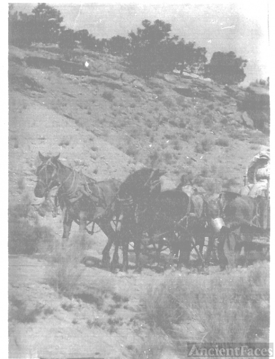 James Ellison Murray Hauling Coal from Price, Utah