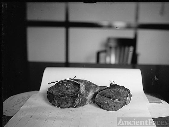 Prohibition Unit (Cow Shoes), 6/28/24