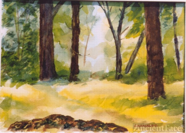 Woods - Watercolor by Fred Halkett