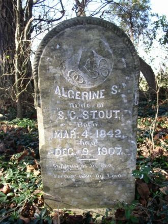 A photo of Algerine S. Stout