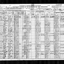 1920 Census, Texas