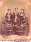 Unidentified MASH-NASH Family members