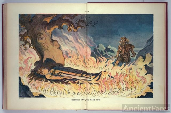 Siegfried and the magic fire / Keppler.