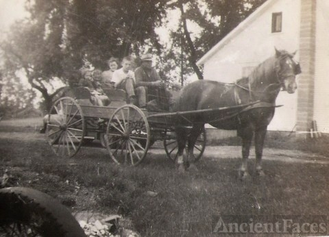 Ekleberry Horse and Wagon