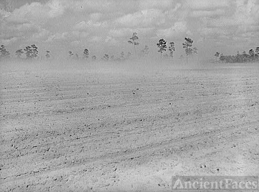 Dust Bowl, Florida 1939