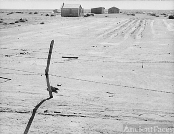 Texas Farm, Dust Bowl Devastation, 1938
