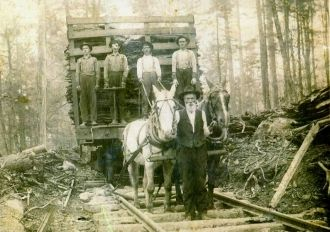 Logging in West Virginia