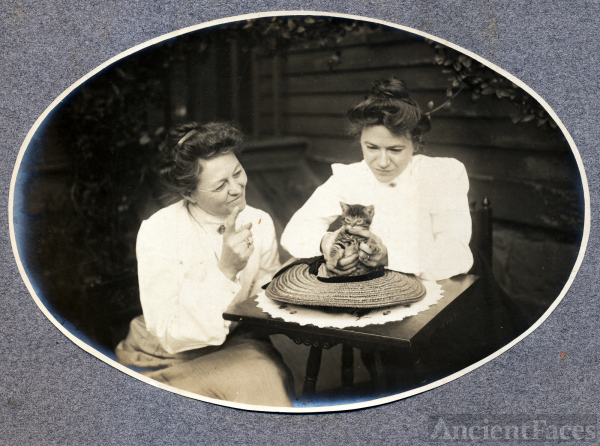 Scheffler Family ladies with kitten