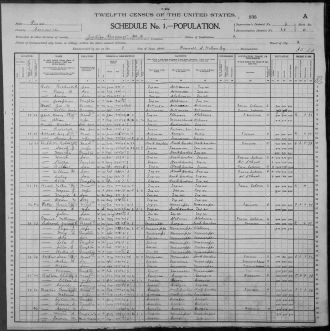 Comanche County Texas 1900 Census