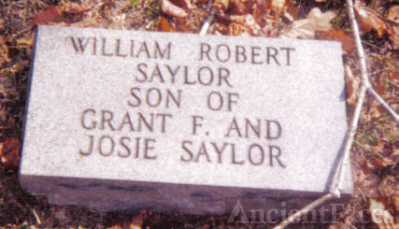 William Saylor, son of Grant and Josie Saylor