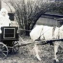 Betty Maddux in a Goat Cart