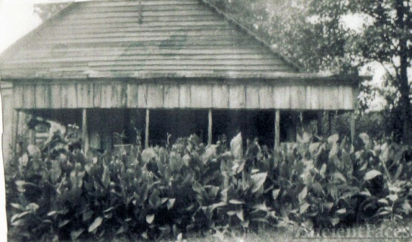 McDOUGAL HOMESTEAD 1939