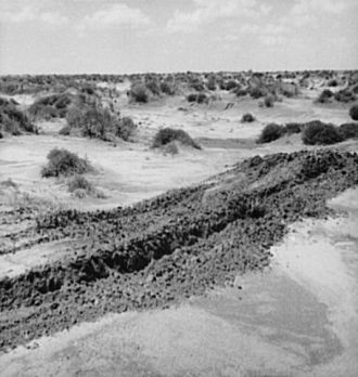Leveling hummocks in the dust bowl. Coldwater District,...