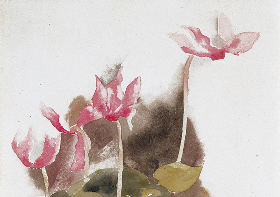 "Fig. 9: Charles Demuth (1883-1935), Cyclamen, 1917. Watercolor and pencil on paper, 13-3/4 x 9-3/4 inches. Signed and dated lower left: ""C. Demuth/1917."" Courtesy Hollis Taggart Galleries, New York."