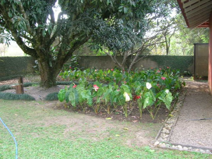 20. b jardim