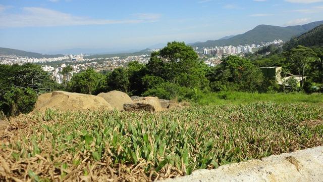 Terreno Codigo 9304a Venda no bairro Córrego Grande na cidade de Florianópolis