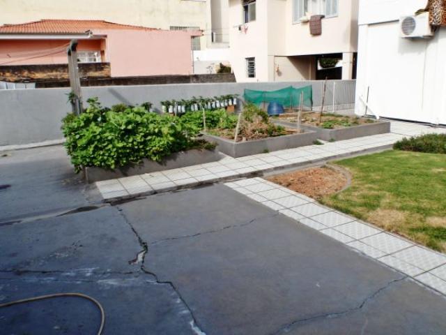 23. quintal e horta de legumes e hortaliças