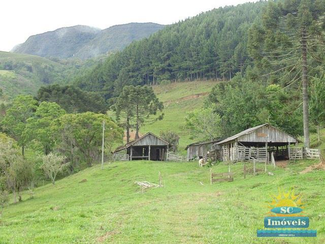 Terreno-Codigo-11992-a-Venda-no-bairro-Arroio do Leão-na-cidade-de-Alfredo Wagner