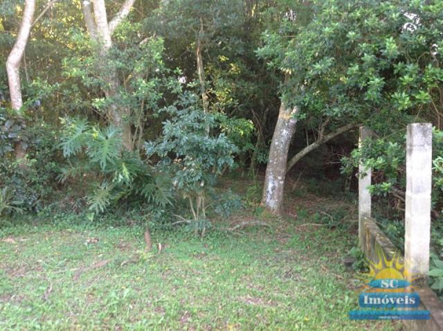 Terreno Codigo 13626a Venda no bairro Ingleses na cidade de Florianópolis