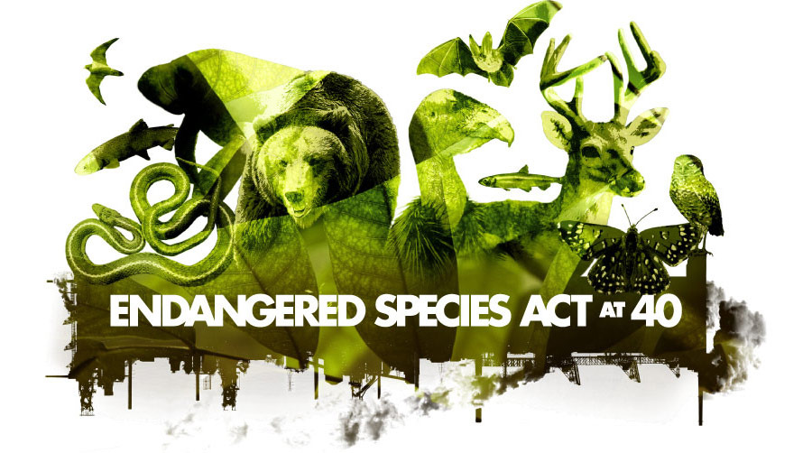 "image from ""Endangered Species Act"" Event branding group"