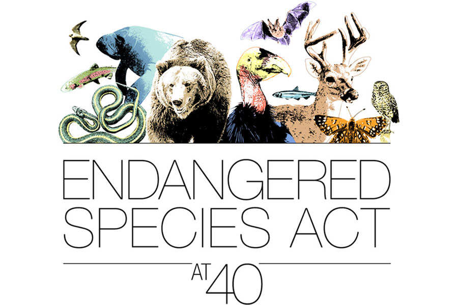 """image from """"Endangered Species Act"""" Event branding group"""