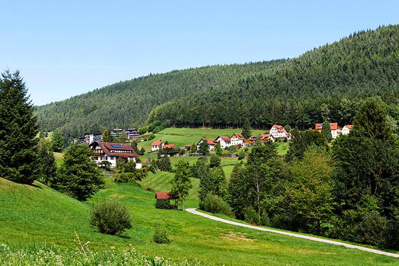 Single frauen schwarzwald
