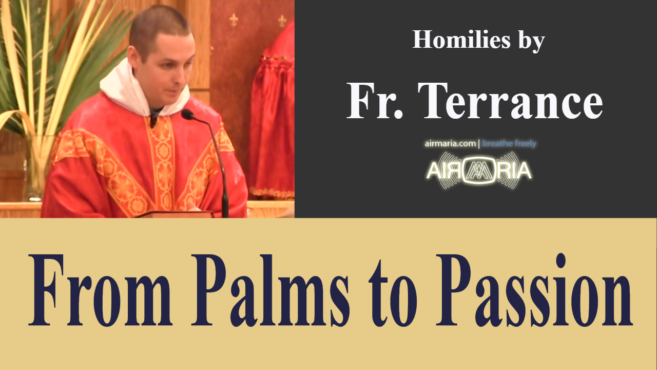 Title_here – Apr 14 – Homily – Fr Terrance
