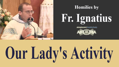 Title_here – May 04 – Homily – Fr Ignatius