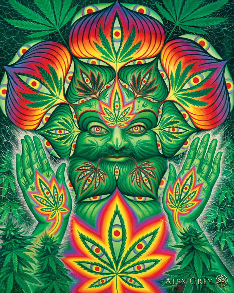 Is cannabis a psychedelic Is cannabis a psychedelic new picture