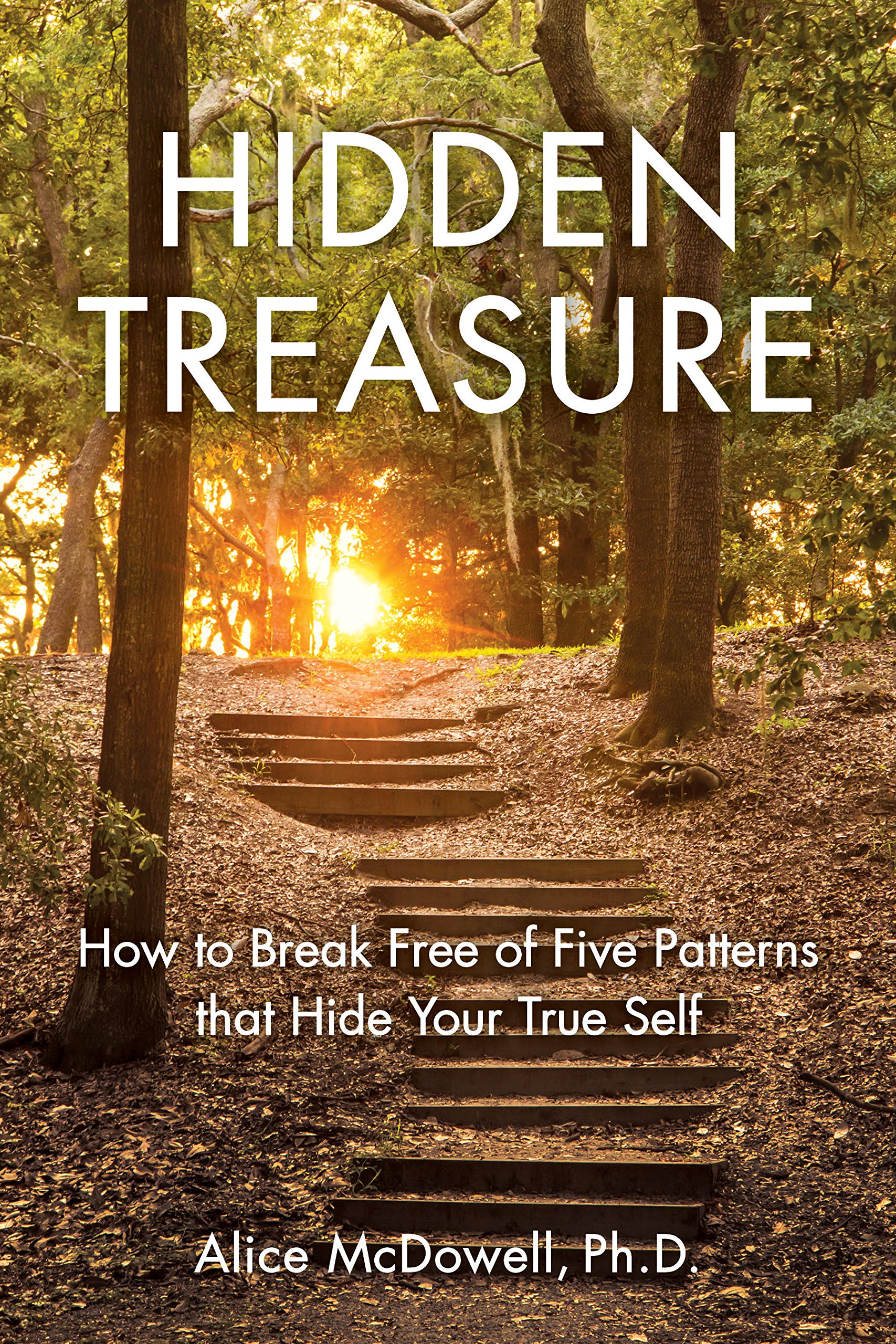 hiddeen treasure book cover