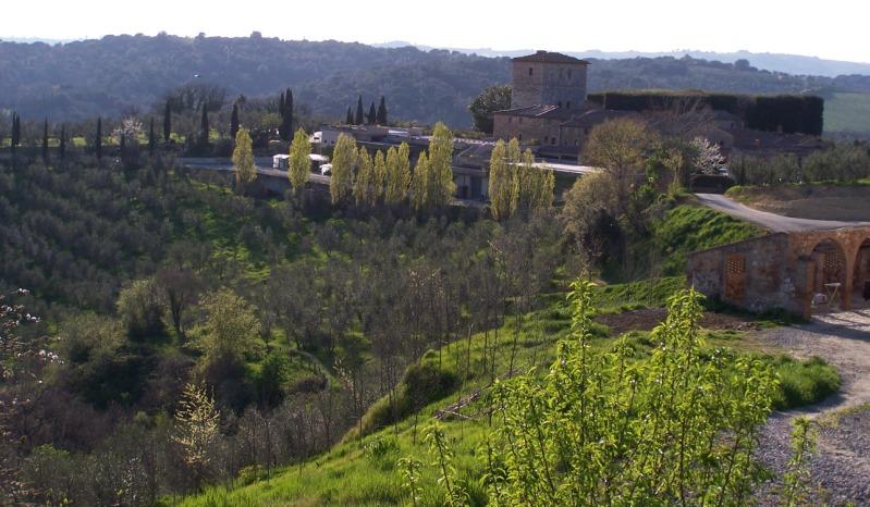 Castellinvilla cover vinous