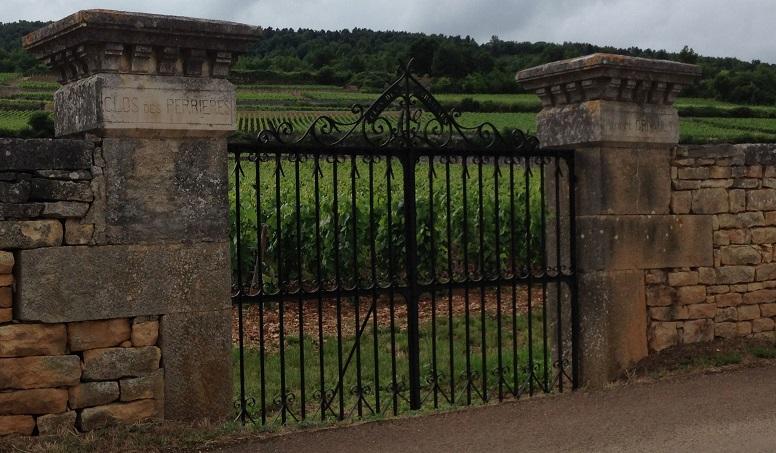 Burgundycover   vinous