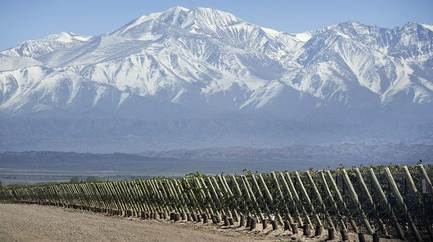 Covermendoza and the towering andes   copy