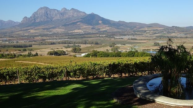 The view from jordan wine estate