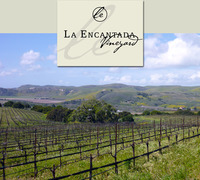 La Encantada Vineyards