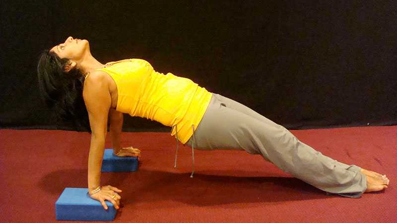Free Beginner's Yoga Class