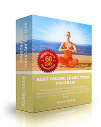 best_learn_yoga_program_box
