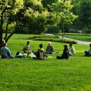 Meditation Instructor Program Updates
